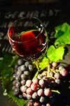 ou acheter huile olive bio